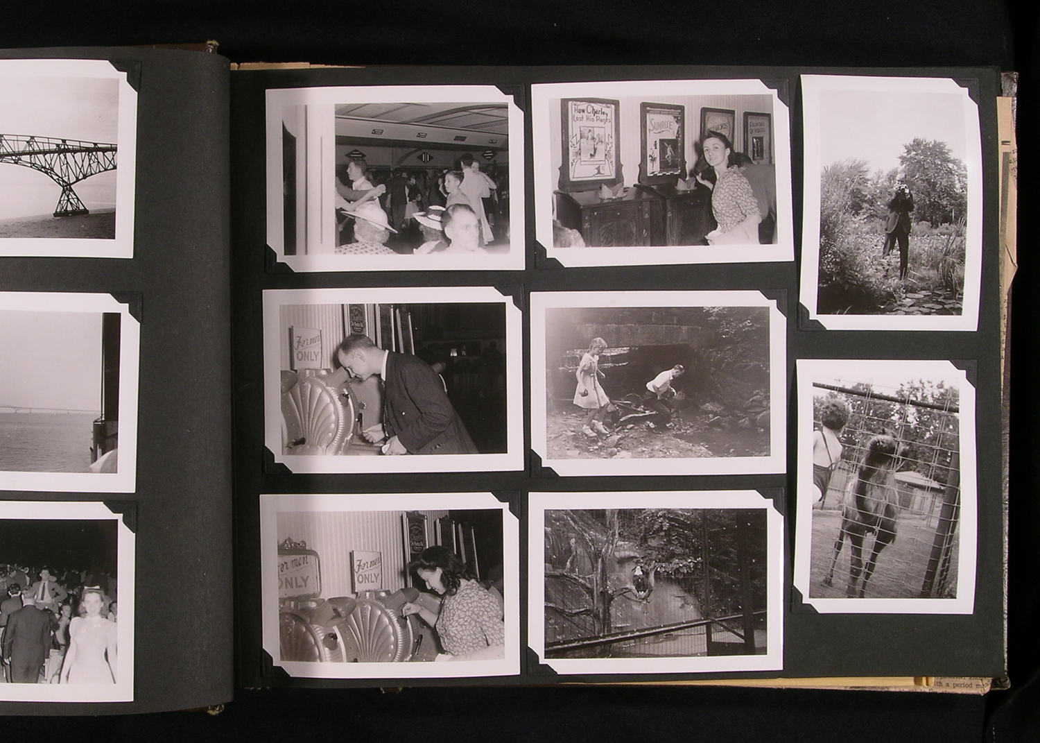 How to preserve vintage photo albums